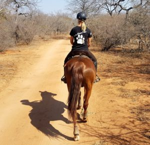 Read more about the article I LEFT MY HEART IN SOUTH AFRICA!